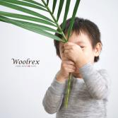 WoolrexUnderwear_Merino